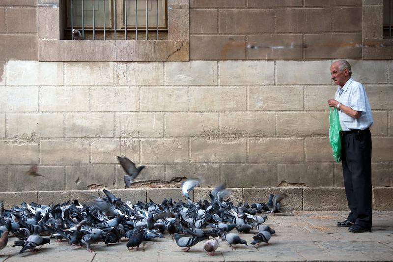 Un anciano alimenta palomas en el patio del antiguo Hospital de la Santa Creu, hoy Biblioteca de Catalunya, calle Hospital, Barcelona