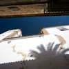 The shadow of a palm tree on the wall of San Francisco Javier church, Caceres, Spain