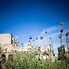Abandoned monastery of San Antonio de Padua (15th century), Garrovillas de Alconetar, Caceres, Extremadura, Spain