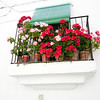 Balcony with flower, Jewish quarter, town of Valencia de Alcantara, province of Caceres, autonomous community of Extremadura, southwestern Spain