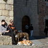Couple sunbathing with their pets, Caceres, Spain