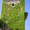 Sande tower, covered with climbing plant, Caceres, Spain