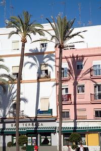 Tall palm trees casting their shadows on the walls. Cadiz, Spain