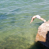 Refreshing, summery image of a boy diving in the sea.