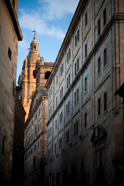 The Pontifical University and the Clergy church on the background, town of Salamanca, autonomous community of Castilla and Leon, Spain