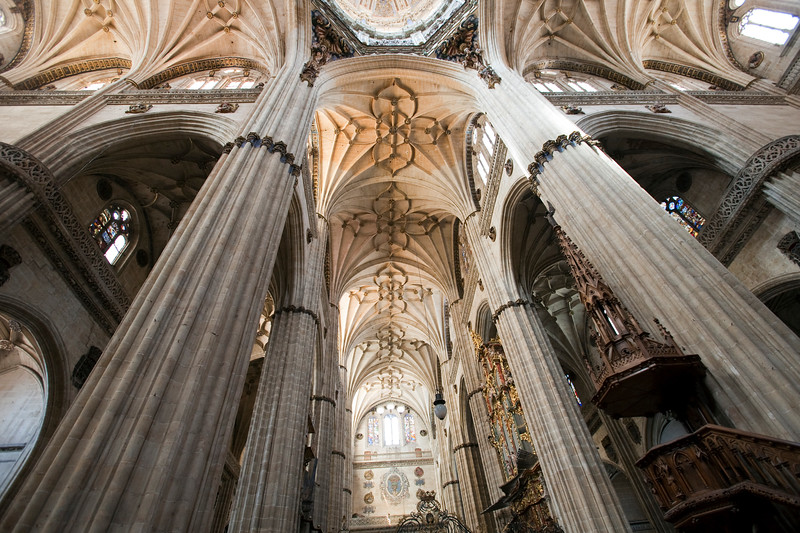 Low angle view of the New Cathedral vaults, town of Salamanca, autonomous community of Castilla and Leon, Spain