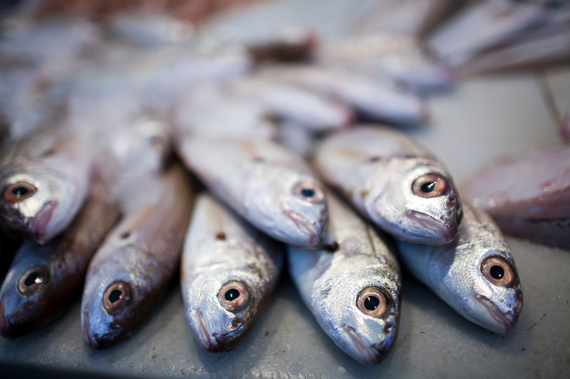 Fresh fish for sale in the market, town of Sanlucar de Barrameda, province of Cadiz, Andalusia, Spain.