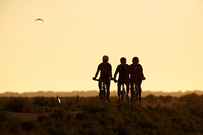 Cyclists on Doñana marshland area, town of Sanlucar de Barrameda, province of Cadiz, Andalusia, Spain.