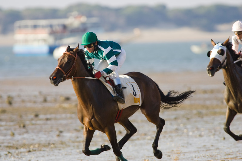 """Thoroughbred horses compete at sea shore with green horizon of """"Doñana National Park"""" and the whole seafront in Sanlucar de Barrameda, Cadiz, Spain. The races date back to the 19th century."""