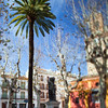 San Lorenzo square, Seville, Spain. Tilted lens used for shallower depth of field.