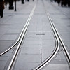 streetcar track, Constitution Avenue, Seville, Spain