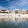 Betis treet by the Guadalquivir river, Seville, Spain