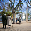 Elderly couple walking, Alameda de Hercules square, Seville, Spain. Tilted lens used for shallower depth of field.
