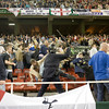 Riot policemen beating Spurs fans on the stands