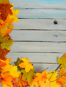 Fall or autumn border of colorful silk leaves, pinecones, and nuts all on a rustic wooden background painted blue. A vintage, grunge filter has been applied. Copy space. The wooden planks run horizontally