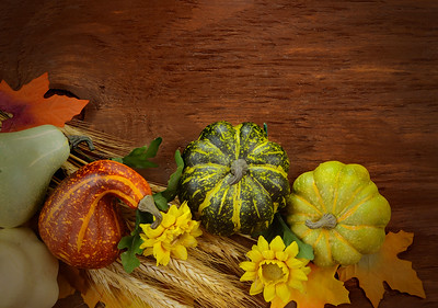 Autumn or fall still life arrangement of sunny yellow flowers, fall leaves and gourds and squashes on a wooden table. Warm tones and slight vignette add seasonal charm. Copy space