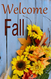 Autumn or fall still life arrangement of sunny yellow flowers, fall leaves and gourds and squashes on a blue washed wooden background. Vertical composition