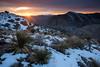 TX-2013-103: Pinto Canyon, Presidio County, TX, USA