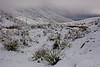 TX-2009-197: El Paso, El Paso County, TX, USA