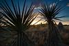 TX-2013-207: Alpine, Brewster County, TX, USA