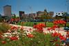TX-2009-082: El Paso, El Paso County, TX, USA