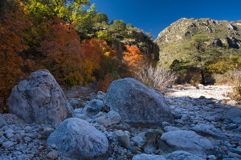 TX-2008-072: Guadalupe Mountains NP, Culberson County, TX, USA