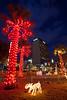 TX-2009-224: El Paso, El Paso County, TX, USA