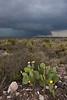 TX-2010-057: , Pecos County, TX, USA