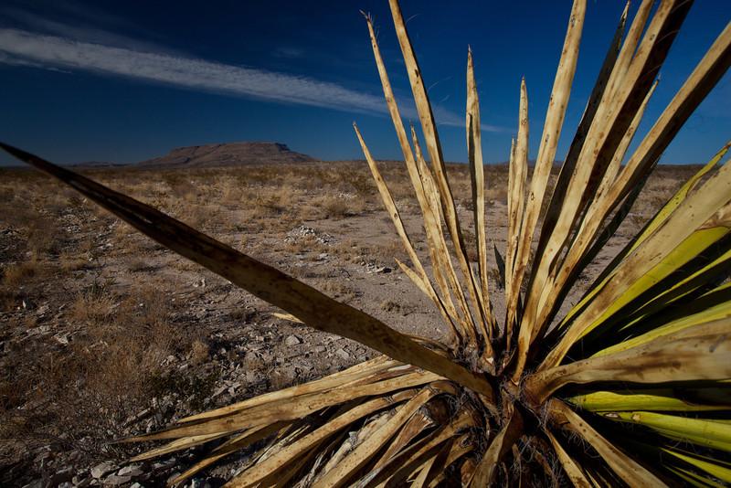 TX-2011-017: Alpine, Brewster County, TX, USA