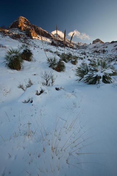 TX-2009-207: El Paso, El Paso County, TX, USA