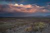 TX-2011-040: Fort Quitman, Hudspeth County, TX, USA