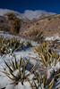 TX-2013-049: El Paso, El Paso County, TX, USA