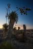 TX-2013-206: Big Bend National Park, Brewster County, TX, USA