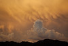 TX-2011-059: El Paso, El Paso County, TX, USA