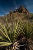 TX-2009-051: Pinto Canyon, Presidio County, TX, USA