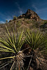 TX-2009-052: Pinto Canyon, Presidio County, TX, USA