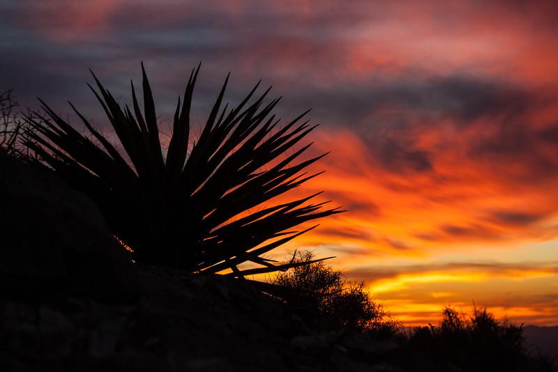 TX-2013-117: El Paso, El Paso County, TX, USA