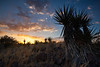 TX-2013-208: Alpine, Brewster County, TX, USA