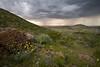 TX-2008-036: El Paso, El Paso County, TX, USA