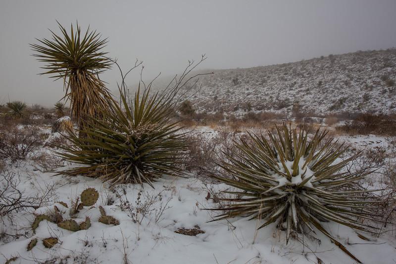 TX-2013-046: El Paso, El Paso County, TX, USA