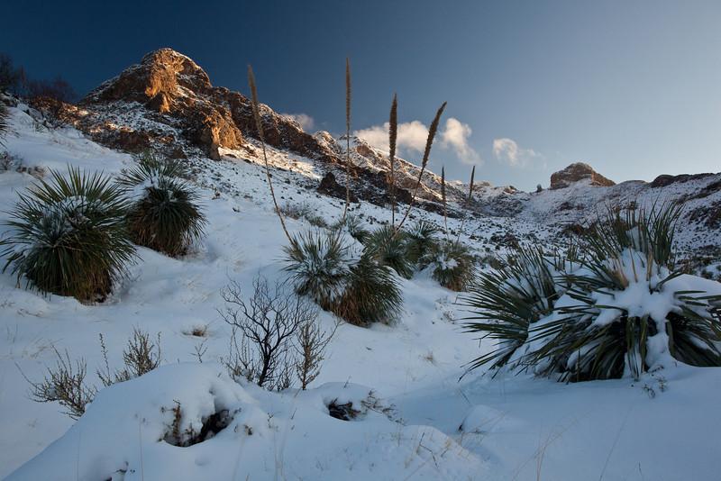 TX-2009-208: El Paso, El Paso County, TX, USA