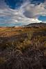 TX-2010-123: , Presidio County, TX, USA