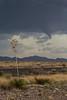 TX-2013-131: Marfa, Presidio County, TX, USA