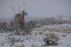 TX-2013-003: El Paso, El Paso County, TX, USA