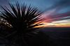 TX-2013-118: El Paso, El Paso County, TX, USA