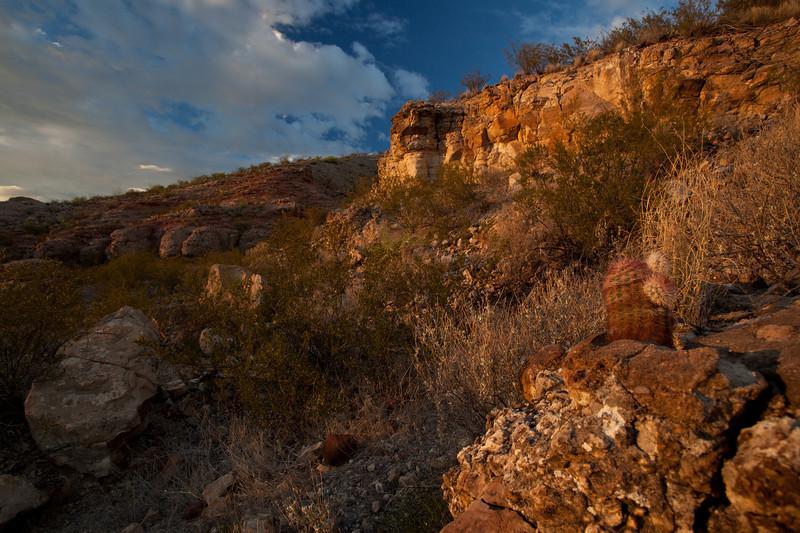 TX-2010-125: , Presidio County, TX, USA