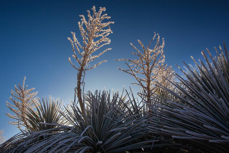 TX-2013-068: El Paso, El Paso County, TX, USA