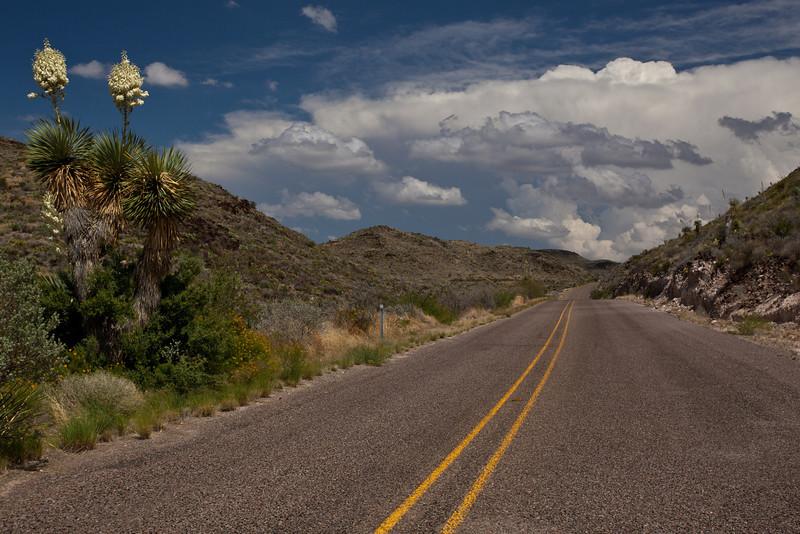 TX-2010-075: Black Gap Wildlife Management Area, Brewster County, TX, USA