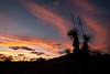 TX-2009-060: , Presidio County, TX, USA
