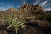 TX-2009-055: Pinto Canyon, Presidio County, TX, USA